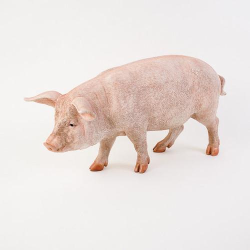 "Blue Ribbon Pig 33"""