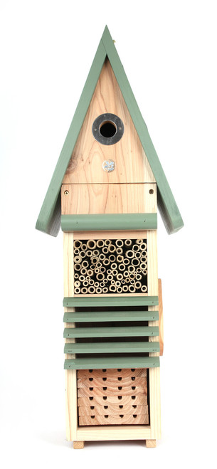 Birds, Bees, and Bug Hotel