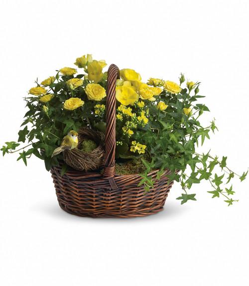 Yellow Trio Basket