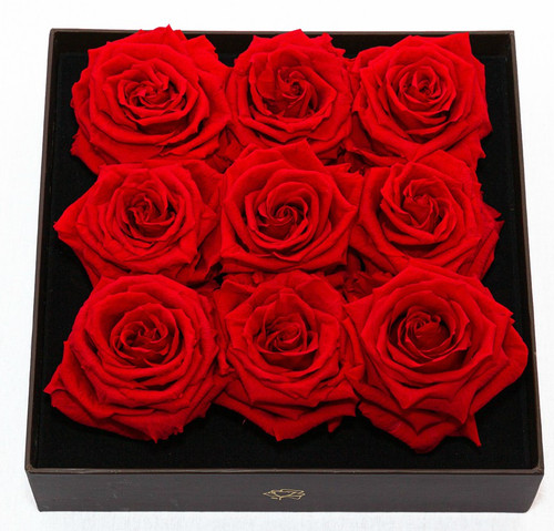 9 Real Red Roses - Preserved Lasts Forever
