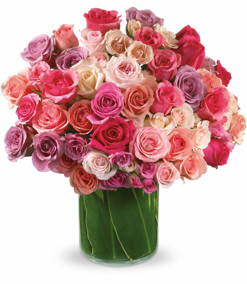 Roses Rapture