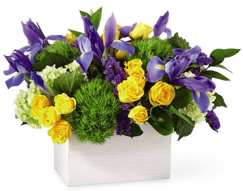 Fields of Iris Bouquet