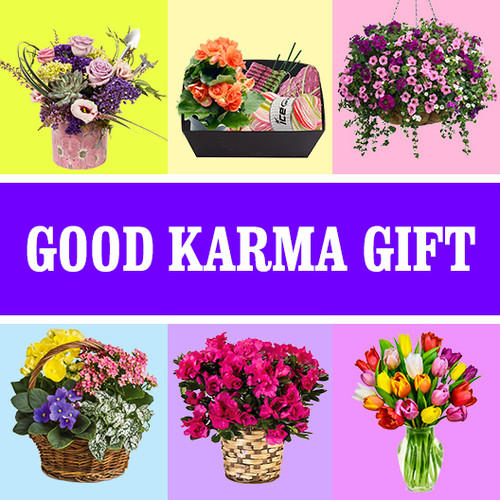 Good Karma Gift - Donate Face Masks To Charity