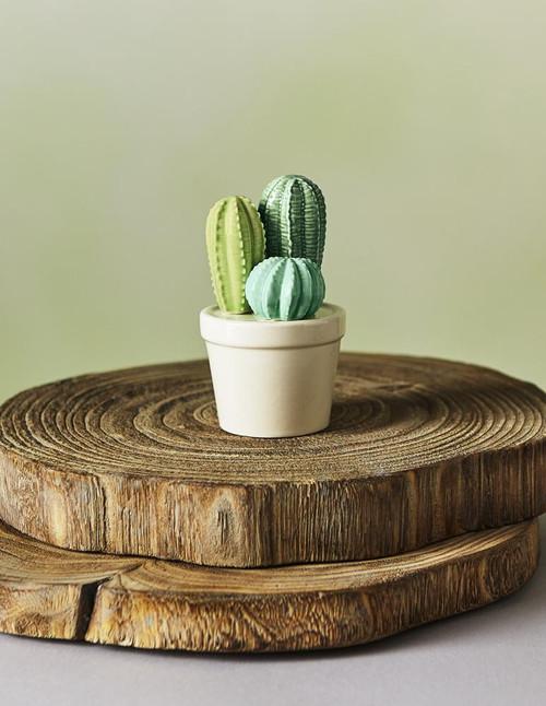 Ceramic Cactus Trio Cactus