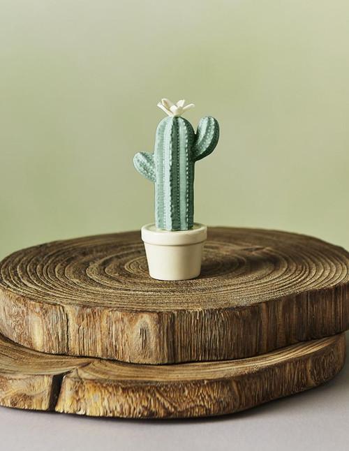 Ceramic Flowering Arm Cactus