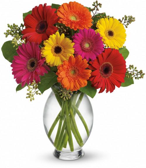 Gerber Delights Bouquet