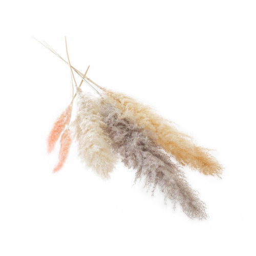 Dried Pampas Grass Bunches  by Accent Decor