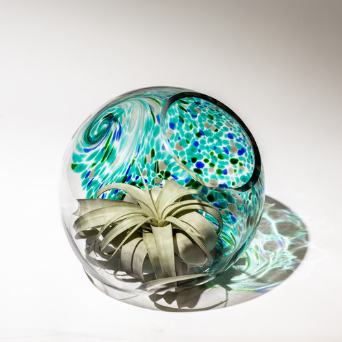"7"" Hand Blown Art Glass Terrarium - Aqua"