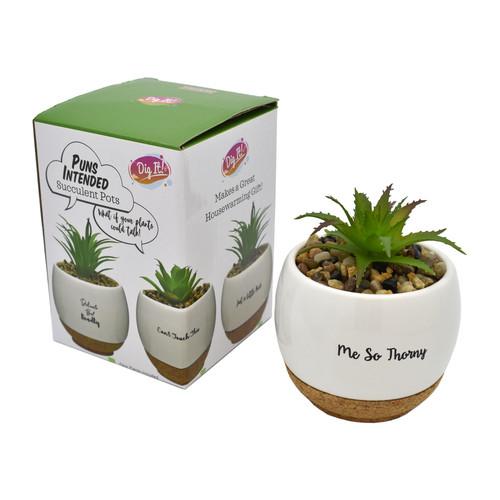 Mini Quotes Faux Succulent Plant and Pot