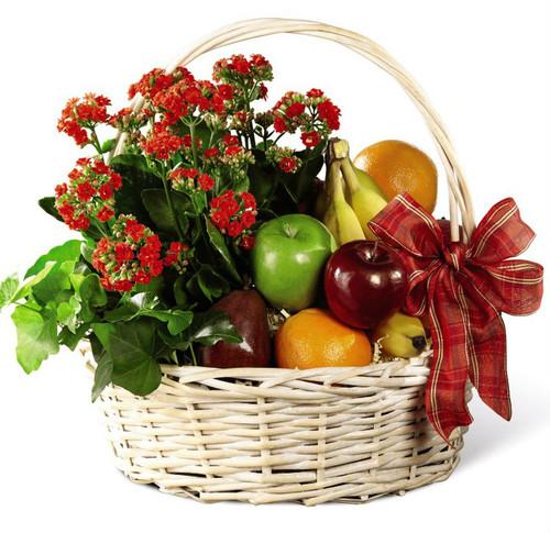 Garden's Paradise Basket
