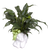 Soderberg's Exclusive Angel Planter with Peace Lily