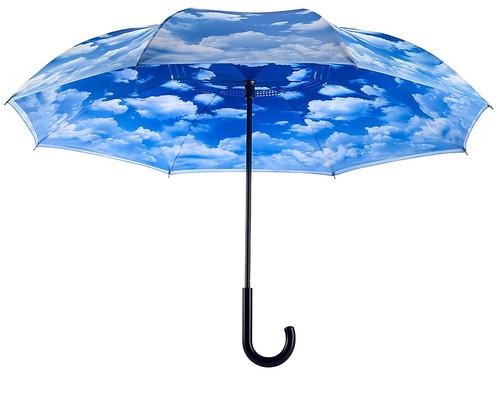 Cloudy Day Umbrella