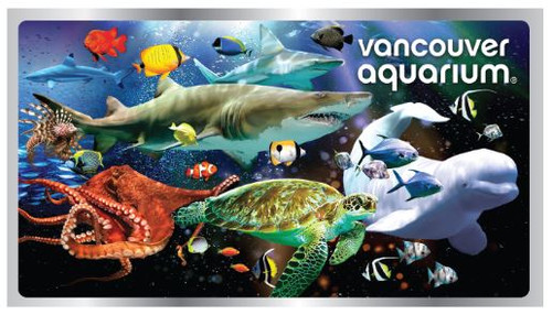 Foil Sea Life Magnet