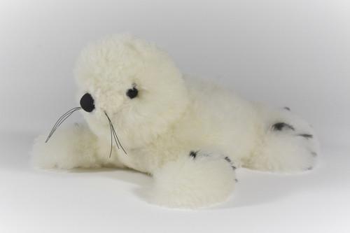 Peruvian Alpaca Fur Seal