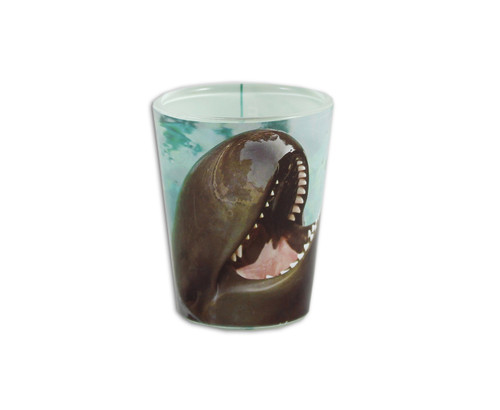 Chester the whale inspired shot glass.