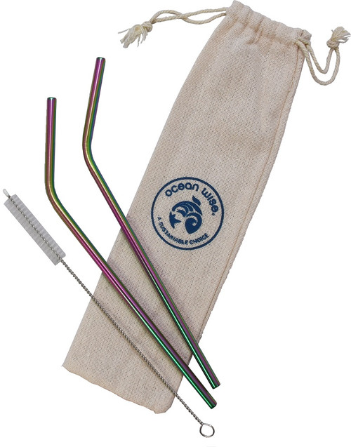 Metal straw 2 pack with cleaning brush