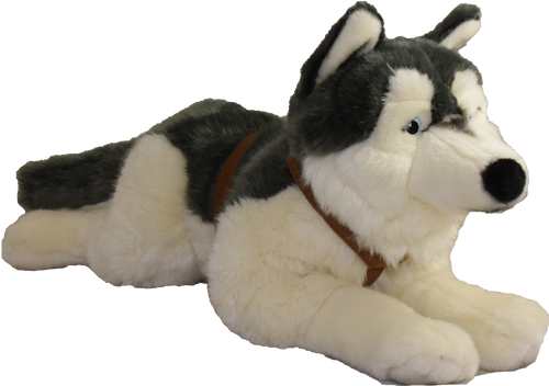 Meet our Lying Husky! This stuffed Husky is plastic free.Many stuffed animals contain pouches of plastic beads (nurdles), the same ones we find on shorelines, and in the ocean; that's why we've eliminated these pouches, and only offer nurdle-free hugs!  We even hand sew our hang tags and use fabric for hanging rather than using the small plastic hook tags.  Your purchase directly supports our efforts to protect our oceans.