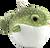 blowfish stuffy