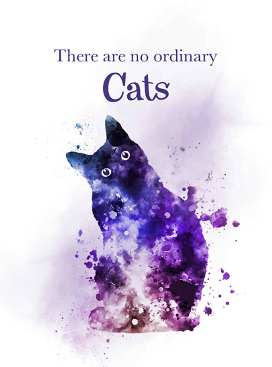 871c2f0294121 There are no ordinary Cats Quote ART PRINT Animal, Cat, Gift, Wall Art,  Home Decor