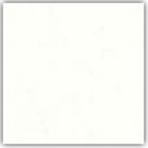 CS-850 Standard Palette Opaque White Litho Ink