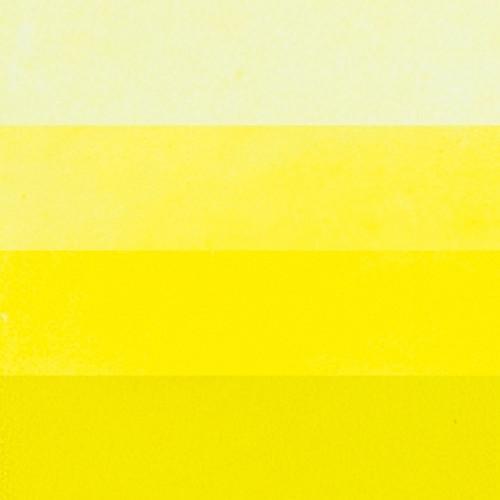 Primrose Yellow Hanco Y-2710