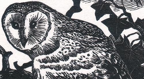 Cranfield Traditional Letterpress Ink Ivy Black BKC 1828