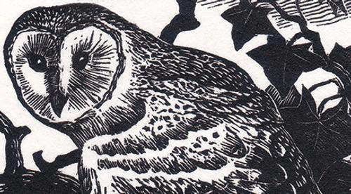 Cranfield Traditional Letterpress Ink Midnight Black BKC 1831