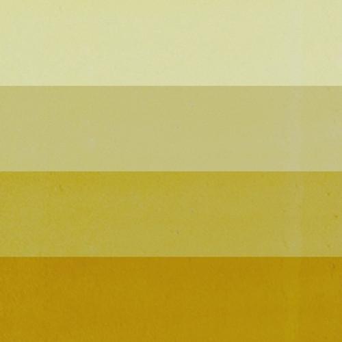 CS-650 Standard Palette Yellow Ochre Litho Ink