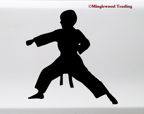 KARATE BOY Vinyl Sticker - Kung Fu Kata Judo Taekwondo Martial Arts - Die Cut Decal