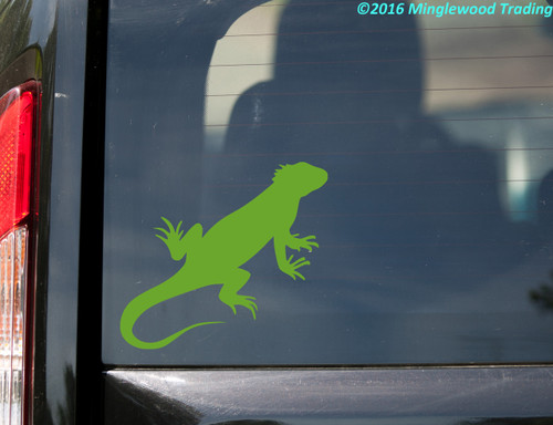 "Iguana vinyl decal sticker 5"" x 4.5"" Lizard Reptile"
