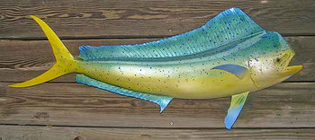 Mahi Mahi 46 inch Full Mount Fiberglass Fish Replica