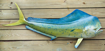 Mahi Mahi, Dorado, Dolphin fiberglass fish replica