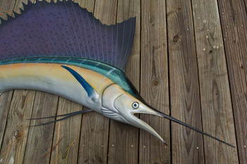 Sailfish fiberglass fish replica