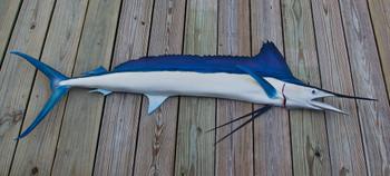Spearfish 74R inch half mount fiberglass fish replica