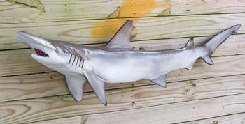 Bonnet Head Shark 46 inch full mount fiberglass fish replica