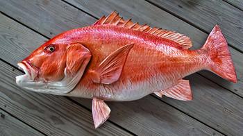 Red Snapper 38 inch Full Mount Fiberglass Fish Replica