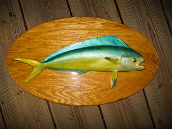 Mahi Mahi 20 inch Full Mount fiberglass fish replica
