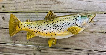 Brown Trout fiberglass fish replica