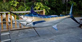 Blue Marlin 130 inch full mount fiberglass fish replica