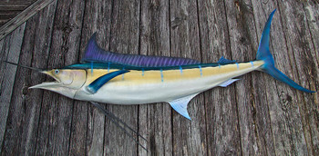 Blue Marlin 74L inch half mount fiberglass fish replica
