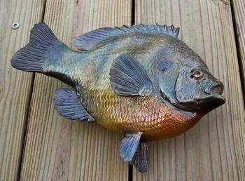 Bluegill fiberglass fish replica