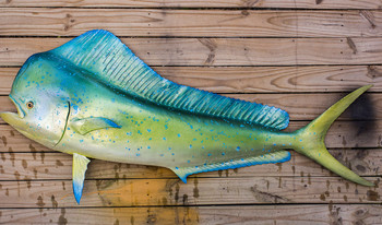 Mahi Mahi, Dolphin, Dorado fiberglass fish replica