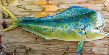 Mahi Mahi, Dolphin or Dorado fiberglass fish replica