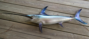 Swordfish fiberglass fish replica