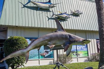 Hammerhead shark fiberglass fish replica