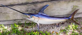 Swordfish 49 fiberglass fish replica