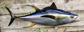 Tuna fiberglass fish replica