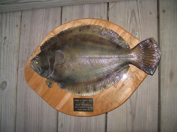 Flounder replica fiberglass fish replica