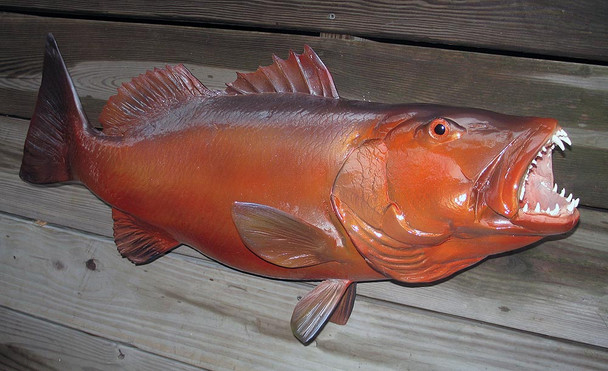 cubera snapper fiberglass fish replica