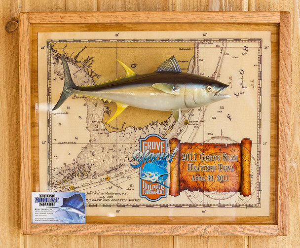 Miniature Yellowfin Tuna fiberglass fish mount replica